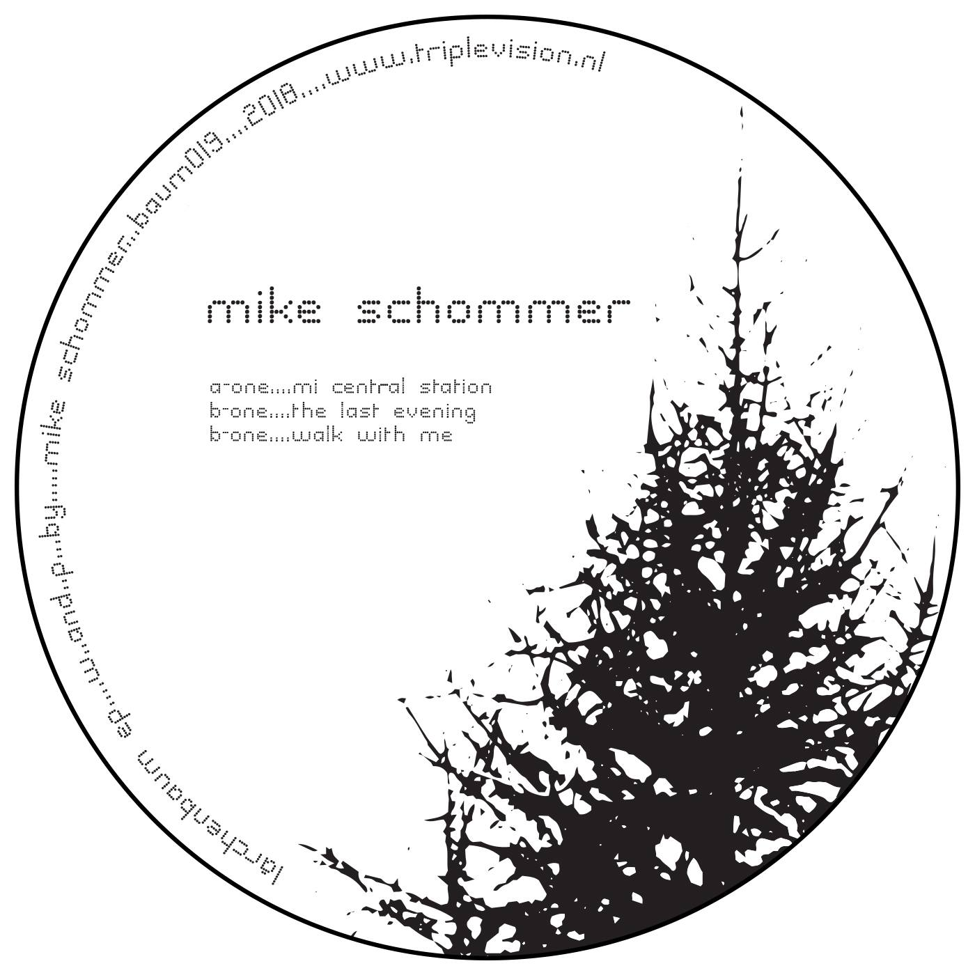 baum records mike schommer larchenbaum ep